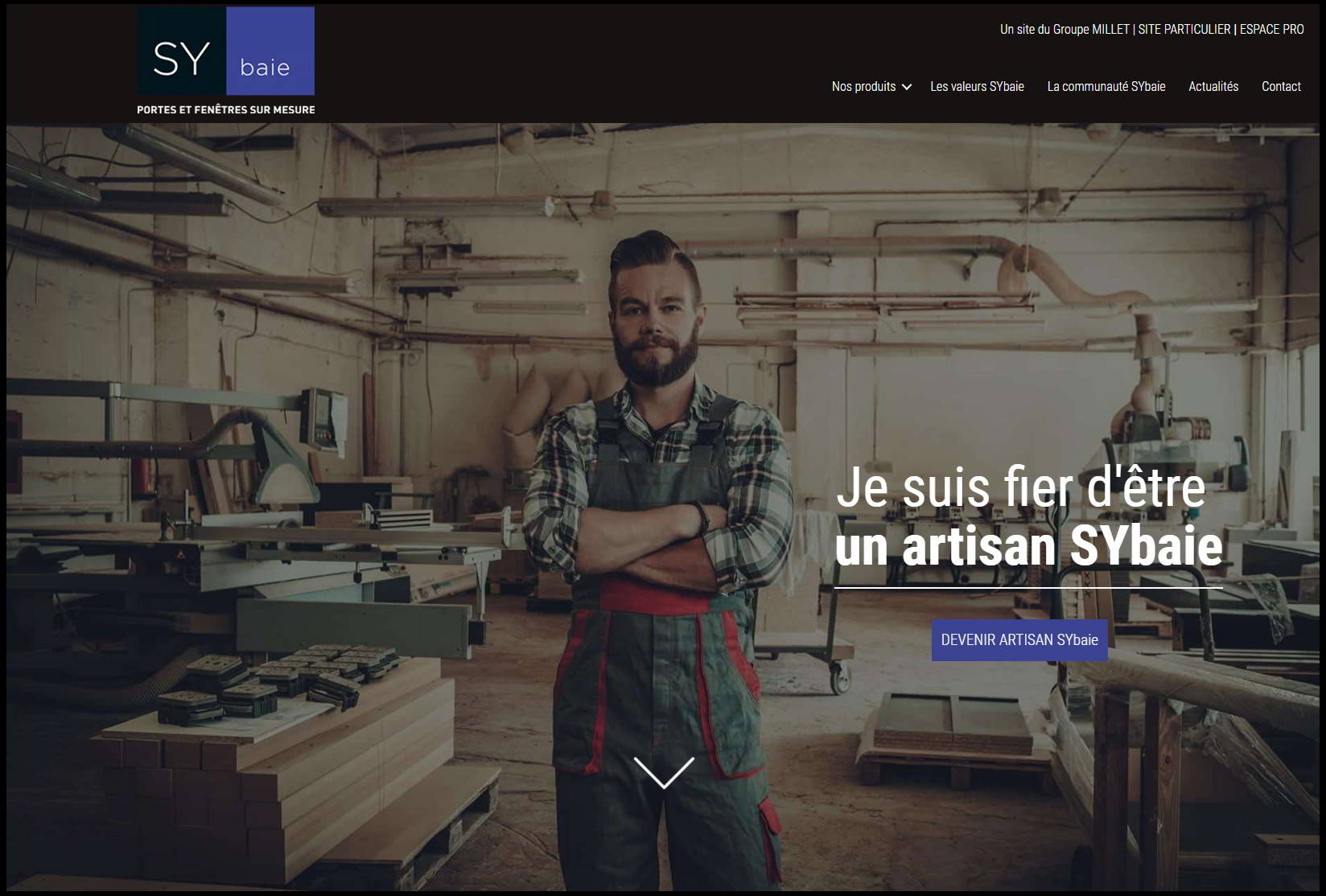 site sybaie pro